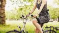 В Гатчинском районе водитель насмерть сбил велосипедистк...