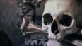 Дети нашли человеческий череп с костями в Кронштадте