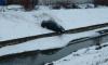 В Купчино иномарка зависла над водоемом