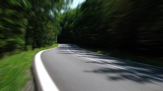 В Гатчине водитель легковушки погиб после столкновения с деревом