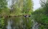 В Псковской области в реке нашли тело пропавшей трехлетней девочки