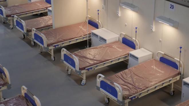 В Петербурге осталось 6% свободных коек для коронавирусных больных