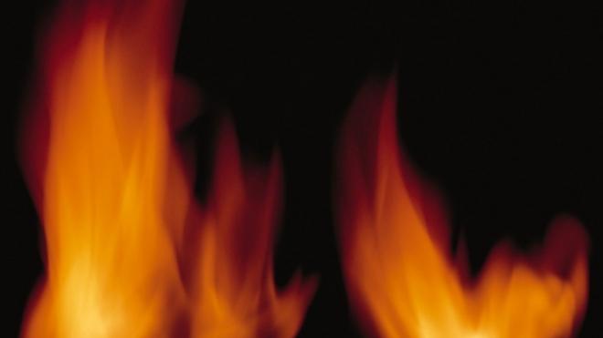 В Подмосковье гражданин Украины убил свою жену и дочь, а потом сжег себя