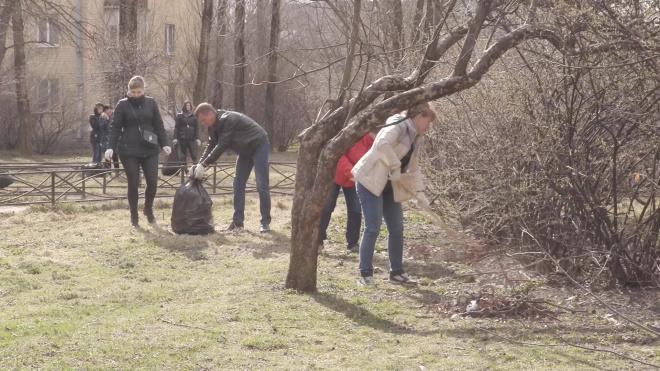 СМИ: депутаты Вишневский и Резник пропустили общегородской субботник ради поездки за границу