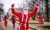 Деды Морозы помешают движению транспорта в Петербурге