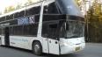 Под Петербургом туристический автобус врезался в фуру