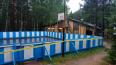 В Приозерском районе ограда спортплощадки придавила ...