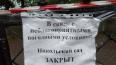 В Петербурге из-за непогоды закрыли пять городских садов