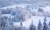 Синоптики: зима в Петербурге будет короче обычного
