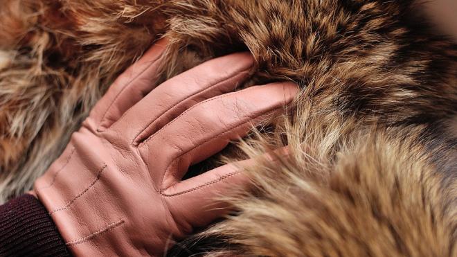 Аномально теплая зима ударила по бизнесу петербургских продавцов одежды