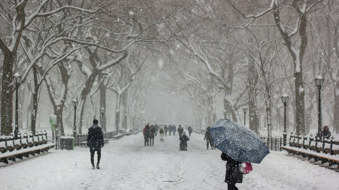 Петербург и область заметет снегом