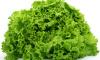 11,5 тонн салата из Ирана уничтожат из-за цветочного вредителя
