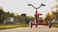 На Петроградке появились две велодорожки общей длинной ...