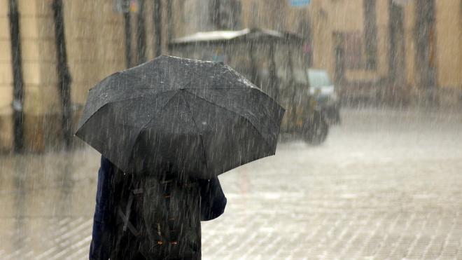 МЧС предупреждает петербуржцев о ветре до 24 м/с и дожде с грозами
