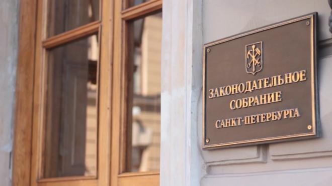 Петербуржец вышел с пикетом против повышения пенсионного возраста к зданию ЗакСа