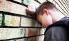 Бастрыкин взял под контроль дело об изнасиловании школьника в Лисьем Носу