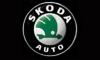 Задержаны покупатели, стрелявшие в охранников автосалона Skoda в Подмосковье