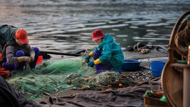 Комитет по природопользованию обязали выпустить почти семь тысяч рыб