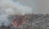 Депутаты предложили оценивать вредность воздуха в Петербурге по запаху