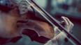 На Невском проспекте пройдут скрипичные концерты