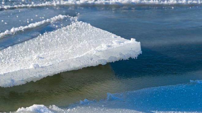 В Таганрогском заливе более 20 человек оказались на оторвавшейся льдине