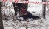 """Фото трупа """"обезглавленного самоубийцы"""" у лицея №179 появились в Сети"""