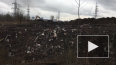 """""""Зеленый Фронт"""": в Кудрово экскаваторы раскапывают ..."""