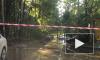 В Петербурге в двух районах бьют фонтаны кипятка из-за испытаний теплосетей