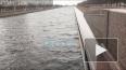 В Петербурге за ночь повысился уровень воды