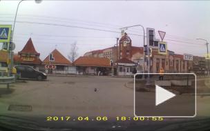Водитель автобуса спас жителей Ивангорода.