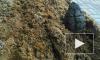 """Во время ремонтных работ у ТРК """"Вояж"""" была обнаружена боевая граната"""