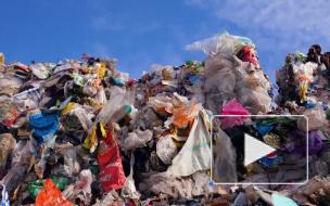 """Минприроды выступило против монополии """"Ростеха"""" на рынке отходов"""