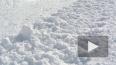 В Нижегородской области погиб в сугробе 10-летний ...