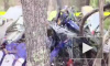 В США при крушении медицинского вертолета погибли 3 человека