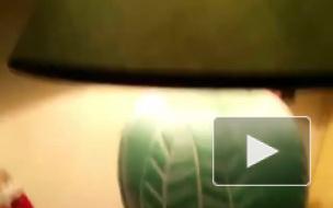 Появились первые видео страшного землетрясения в Италии