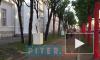 """Видео: у стен """"Манежа"""" появись необычные экспозиции"""