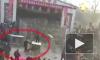 Жуткие кадры из Китая: Цирковой тигр выбрался из клетки и набросился на зрителей