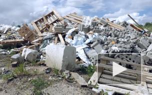"""В ЖК """"Невские паруса"""" жильцы страдают от мусорных развалов"""