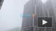 Петербургское лето закончилось туманом