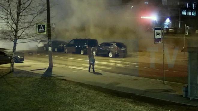 Появилось видео момента прорыва трубы на Пулковской улице