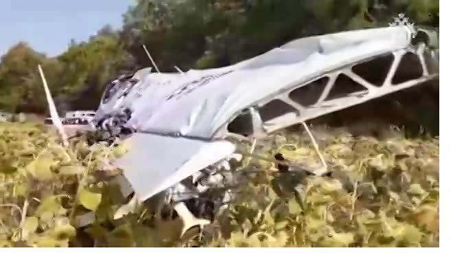 Следственный комитет опубликовал видео с места крушения самолета в Ульяновской области