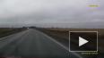 Появилось видео жуткого ДТП на Ропшинском шоссе
