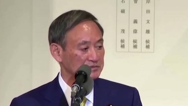 МИД Японии высказался о судьбе мирного договора с Россией