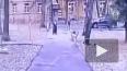 Москвич жестоко избил 78-летнюю старушку, кормившую ...