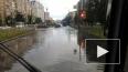 Несколько районов Петербурга подтопило из-за дождя