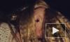 Криминал в большом городе: Дед-извращенец изнасиловал свою малолетнюю внучку