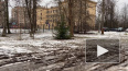 Жители Ржевки недовольны отсутствием тротуаров у единств...