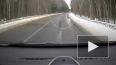 Видео: водитель в Кингисеппском районе чудом спасся ...