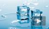 Жириновский принял участие в Ice Bucket Challenge и облился ледяной водой
