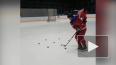 Бывшему хоккеисту СКА пообещали пожизненный запас ...